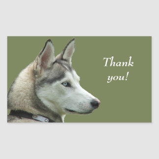 Husky Siberian dog photo thank you stickers