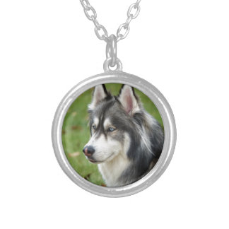 Husky Silver Plated Necklace