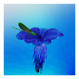 Hyacinth Aquatic Poster