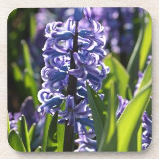 Hyacinth Beverage Coaster