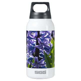 Hyacinth Insulated Water Bottle