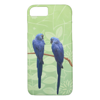 Hyacinth Macaw Duo Phone Case