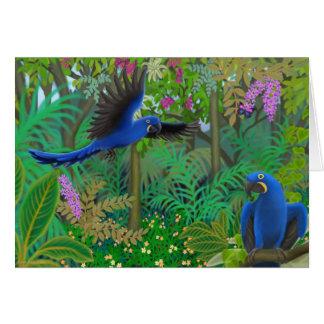 Hyacinth Macaw Jungle Card