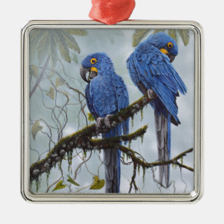 Hyacinth Macaw just for your special gifts Silver-Colored Square Ornament