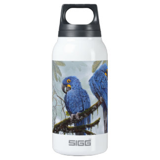 Hyacinth Macaw just for your special Insulated Water Bottle