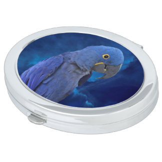 Hyacinth Macaw Mirrors For Makeup