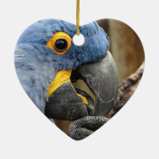 Hyacinth Macaw Parrot Ceramic Heart Ornament