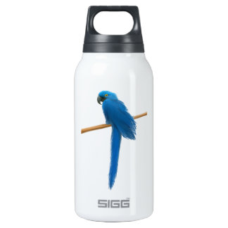 Hyacinth Macaw Parrot Insulated Water Bottle