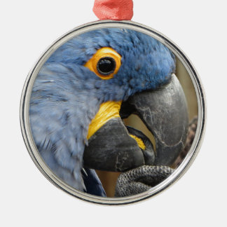 Hyacinth Macaw Parrot Silver-Colored Round Ornament