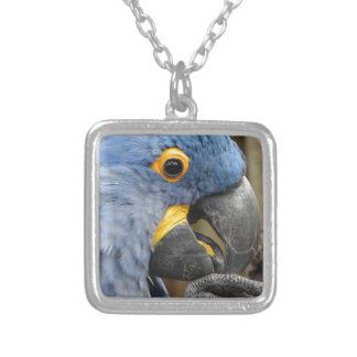 Hyacinth Macaw Parrot Silver Plated Necklace