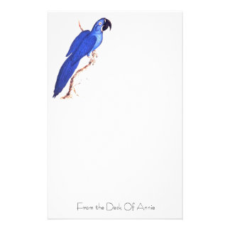 Hyacinth Macaw Stationery