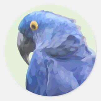 Hyacinth Macaw Sticker