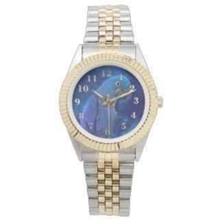 Hyacinth Macaw Watches