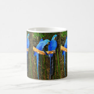 Hyacinth Macaws Coffee Mug