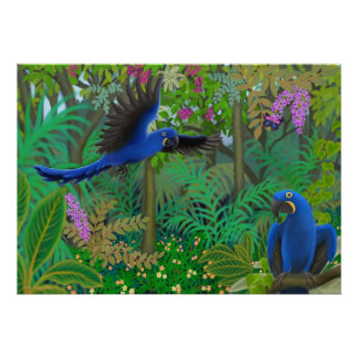 Hyacinth Macaws in the Jungle Poster
