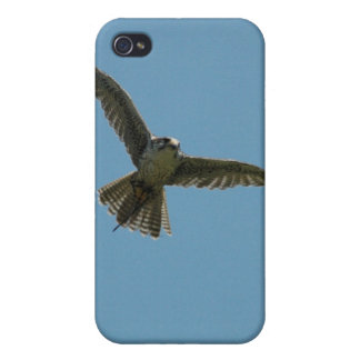 hybrid falcon ipod touch case iPhone 4/4S cover