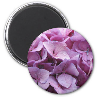 Hydrangea Blossoms Round Magnet Fridge Magnet