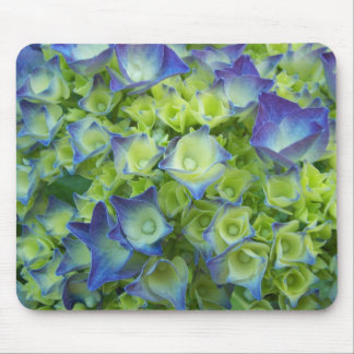 Hydrangea Buds Floral Mouse Pad
