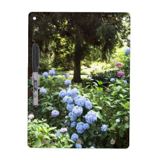 Hydrangea Floral Trees Nature Photography Dry Erase Board