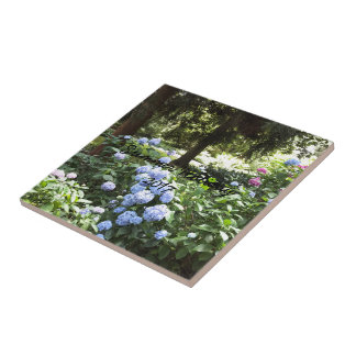 Hydrangea Floral Trees Nature Photography Tile