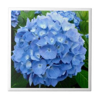 hydrangea flower digital tile design