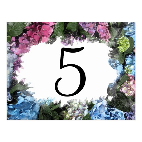 Hydrangea Flower Frame Table Numbers Postcard