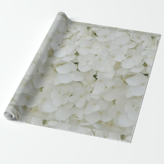 Hydrangea Flowers Floral White Elegant Blossom