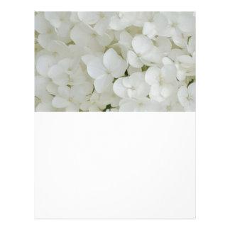 Hydrangea Flowers Floral White Elegant Blossom Letterhead