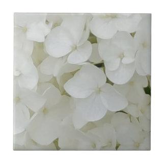 Hydrangea Flowers Floral White Elegant Blossom Tile