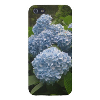 Hydrangea iPhone 5 case