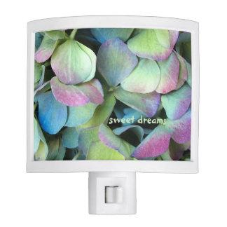 HYDRANGEA  Multi-color petals --- Nite Lites