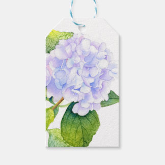 Hydrangea Pack Of Gift Tags