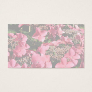 Hydrangea. Pink flowers. Soft Pastel Colors. Business Card