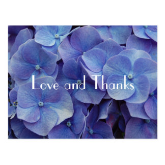 Hydrangea Purple Thank You Postcard