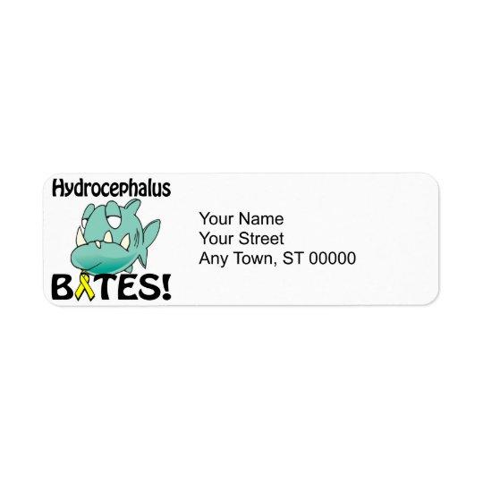 Hydrocephalus BITES