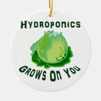 Hydroponics Grows On You Lettuce Ceramic Ornament