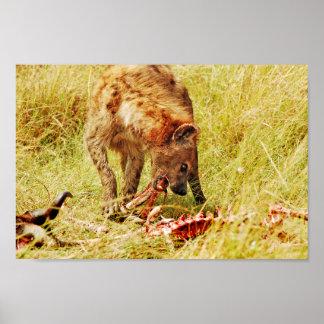 Hyena Kenya Masai Mara Poster