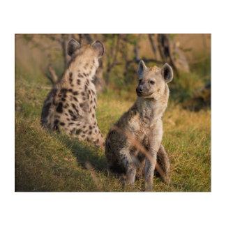Hyenas Acrylic Wall Art