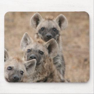 Hyenas Mouse Pad