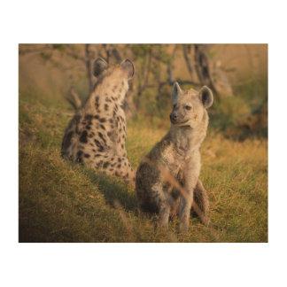Hyenas Wood Print