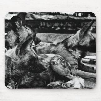 Hyènes Tapis De Souris