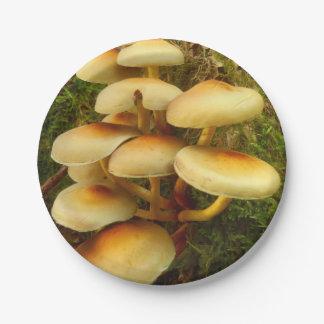 Hypholoma fasciculare Mushroom Paper Plates