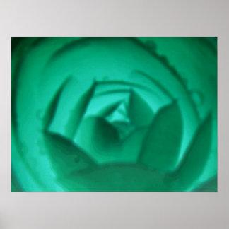 Hypnotic Camellia Flower Print
