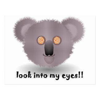 hypnotic koala postcard