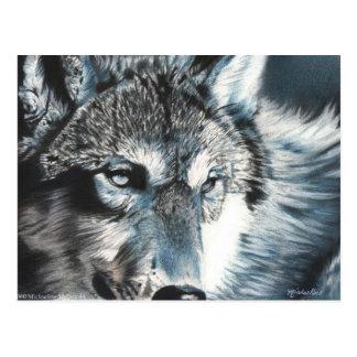 Hypnotic - Wolf Postcard