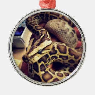 Hypo baby burmese python photo design. Silver-Colored round ornament