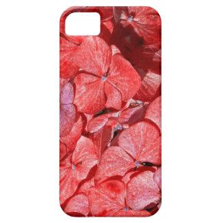 Hyranga - la fleur pour un 4ème anniversaire coque Case-Mate iPhone 5