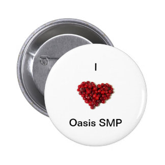 I 3 Oasis SMP Buttons