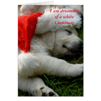 I am dreaming of a white x-mas card