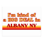 I am kind of a BIG DEAL in Albany Postcard
